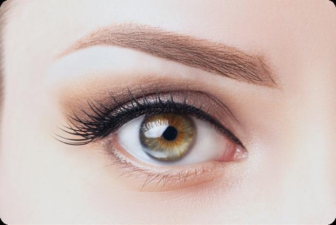 Leistungen-Anpassung contactlinsen hamburg